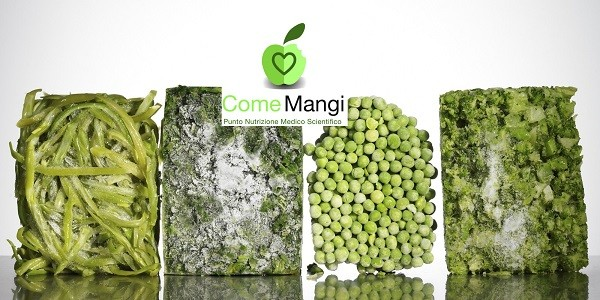 Blocks of frozen vegetables
