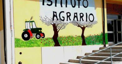 ADEGUAMENTO ANTISISMICO PER L'ISTITUTO AGRARIO DI PRATOLA PELIGNA